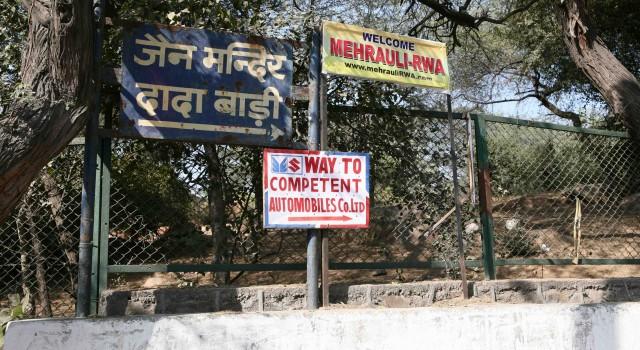 Camera Market and Parathas